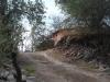Camino interno de La Pampilla